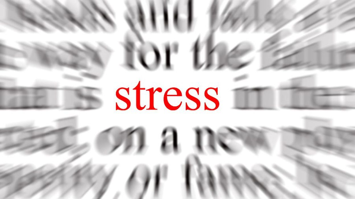 How to Place Stress in a Sentence